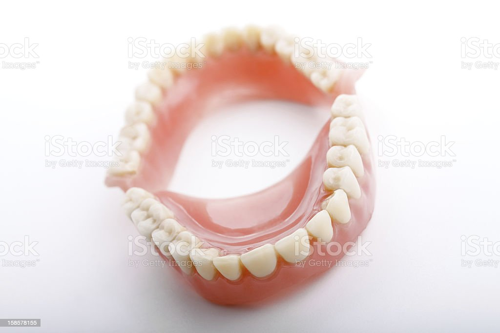 dental jaws, body part stock photo