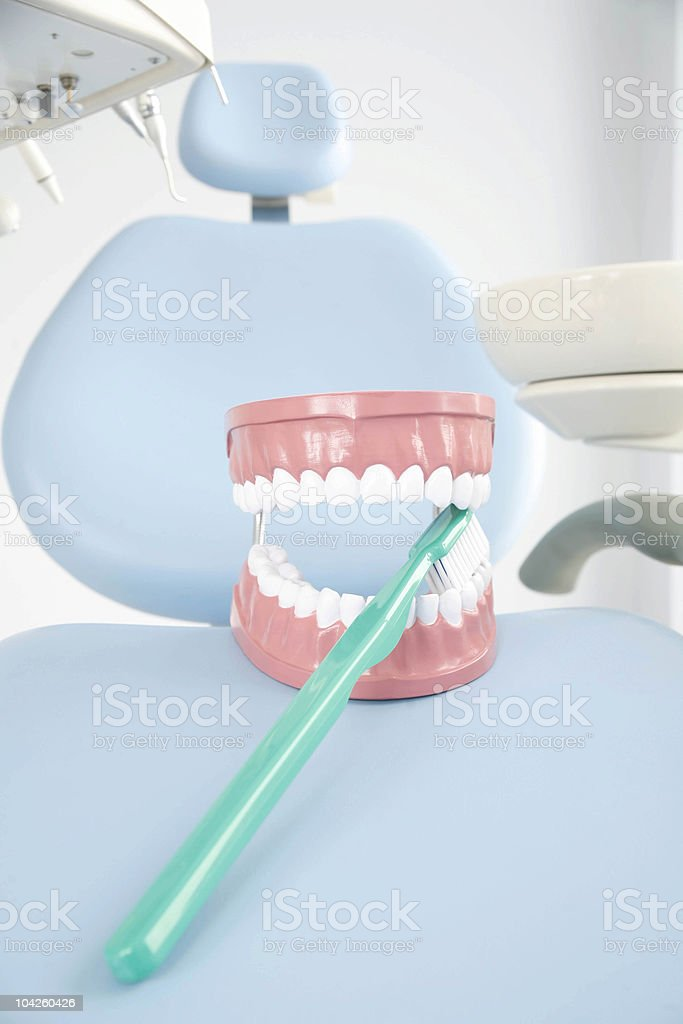 Dental Plate royalty-free stock photo
