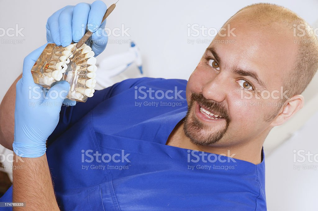Dentist and Teeth Model stock photo