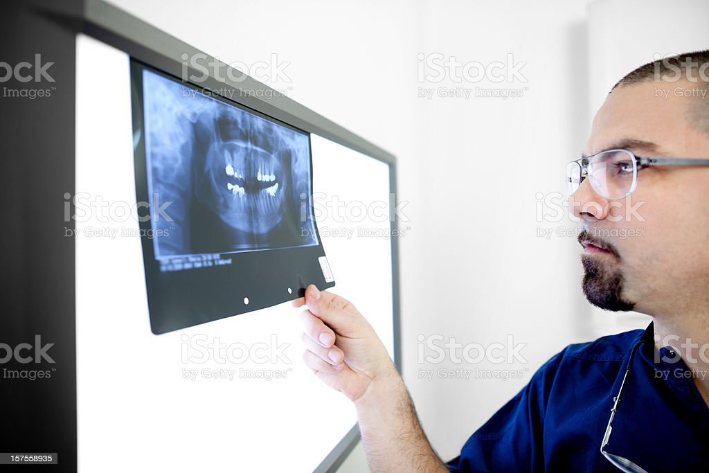 Dentist checking X-ray image royalty-free stock photo