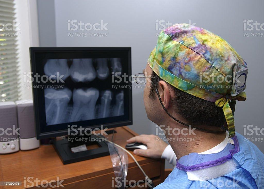 Dentist Examining X-Rays royalty-free stock photo