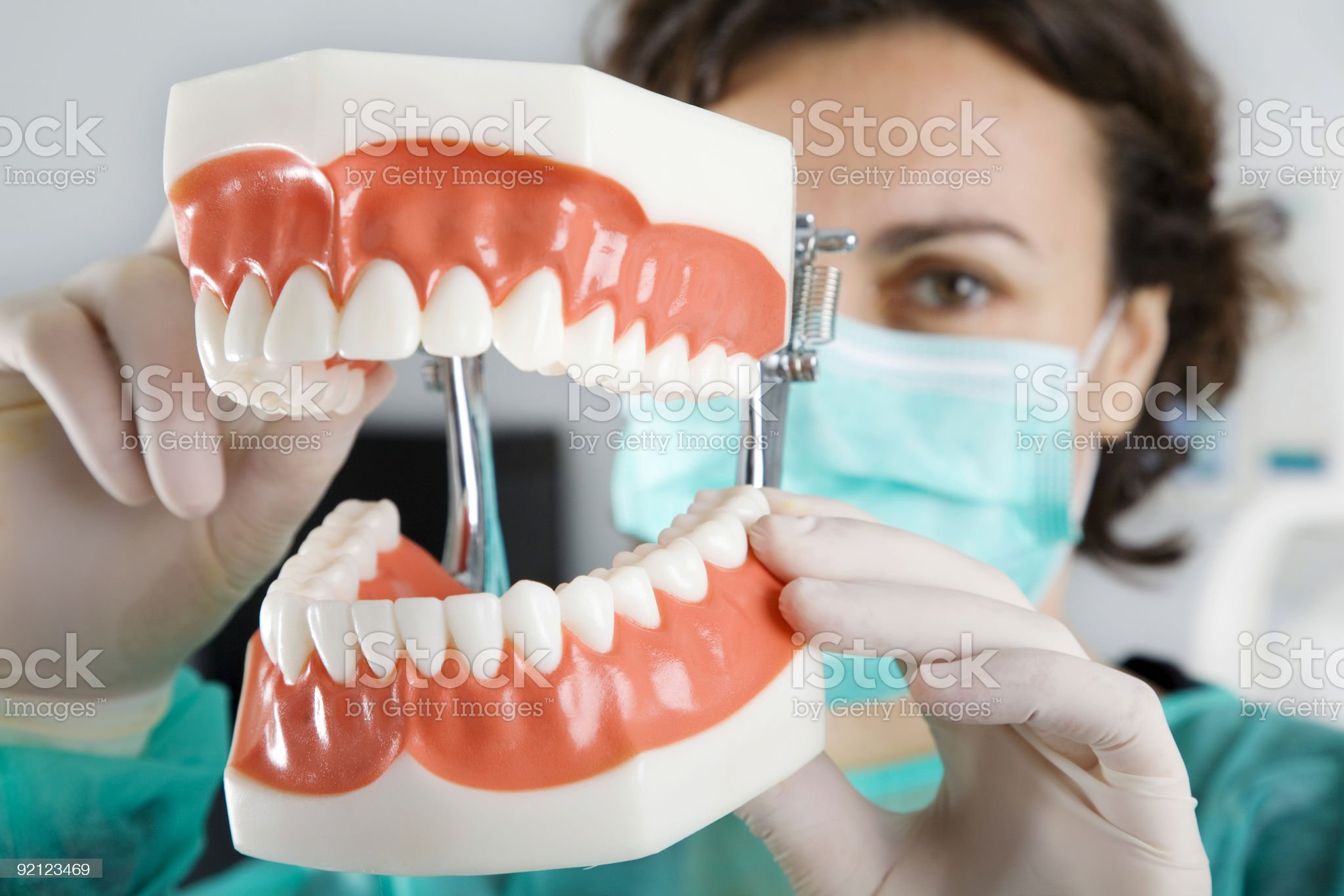Dentist showing a reproduction teeth royalty-free stock photo
