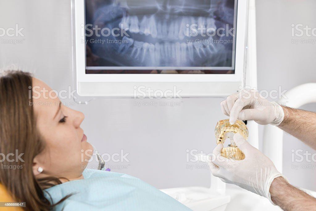 Dentist showing dental jaw model to patient stock photo