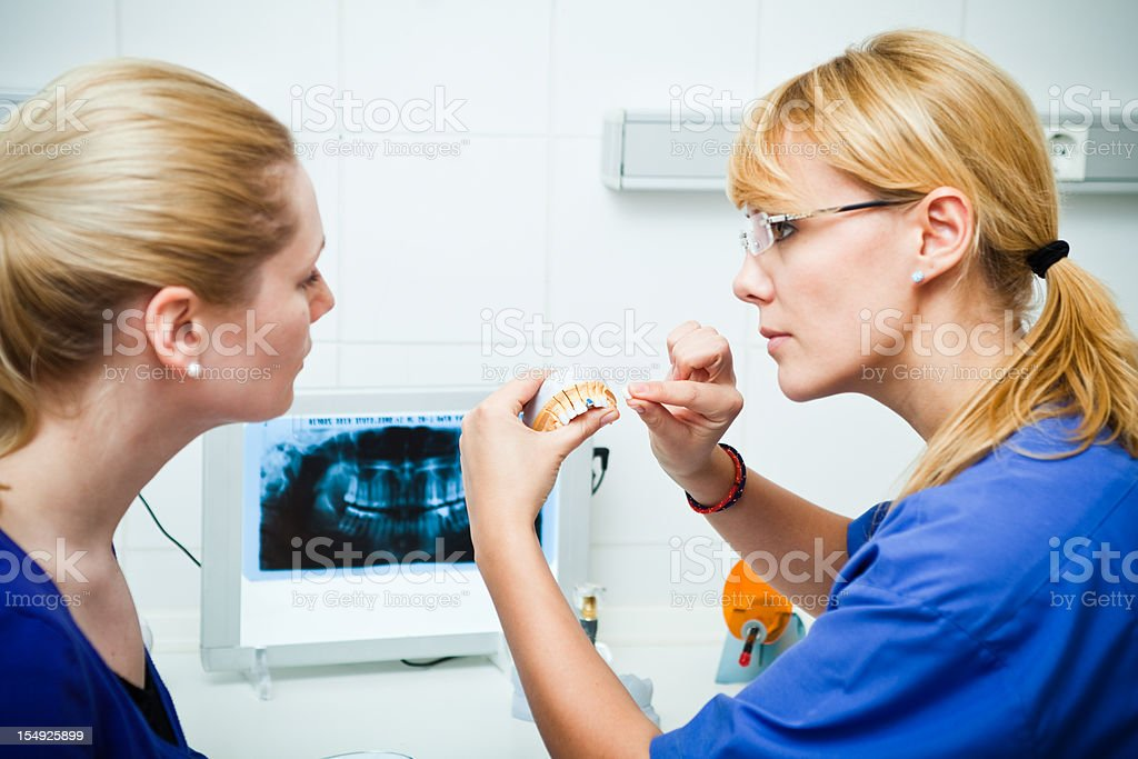 Dentist showing patient a model of teeth stock photo