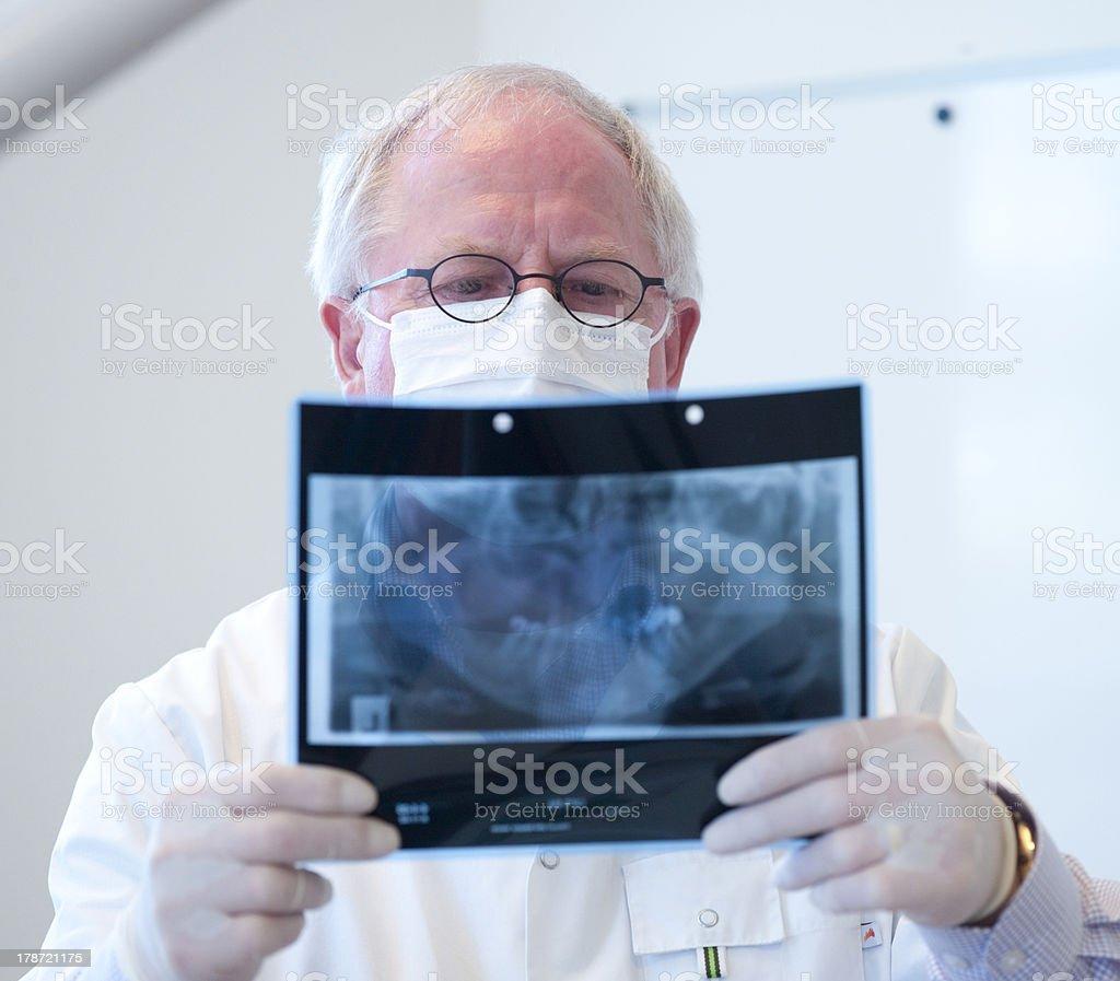 Dentist with xray stock photo
