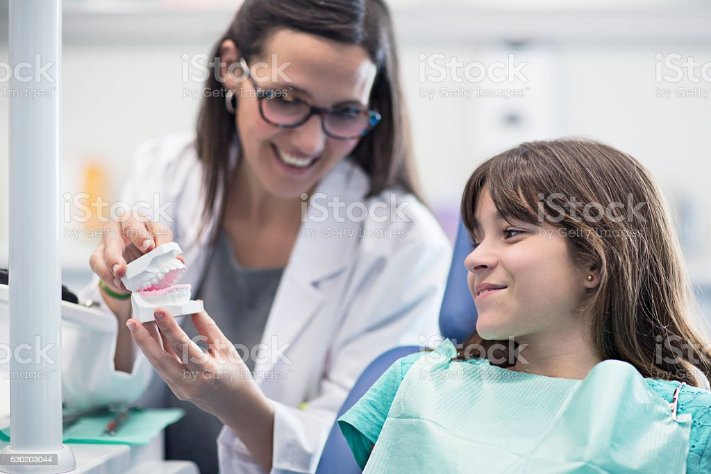 Dentist's assistant showing teeth model to girl stock photo