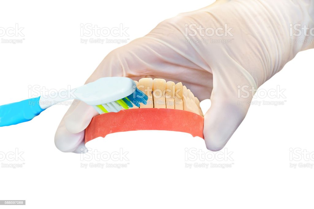 Dentures, denture and tooth brush stock photo