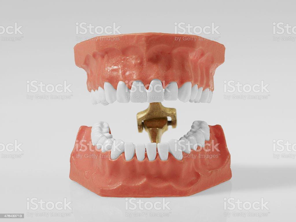 Dentures On White stock photo