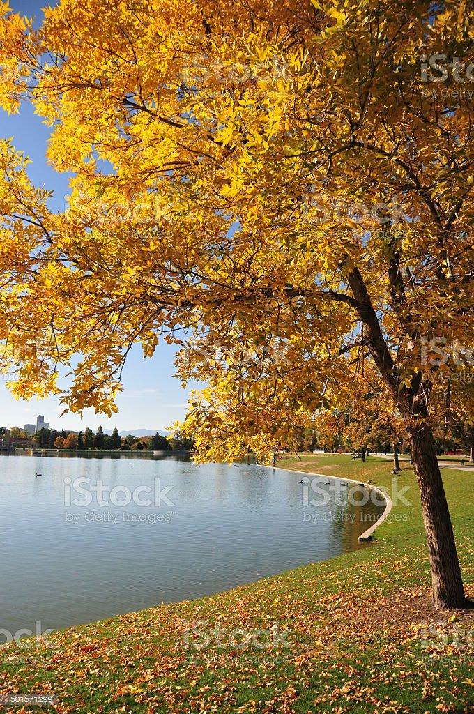 Denver, Colorado: City Park - Ferril Lake stock photo