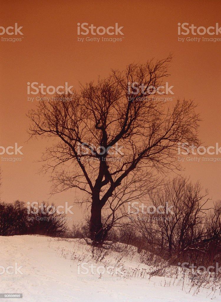 Depression winter landscape royalty-free stock photo
