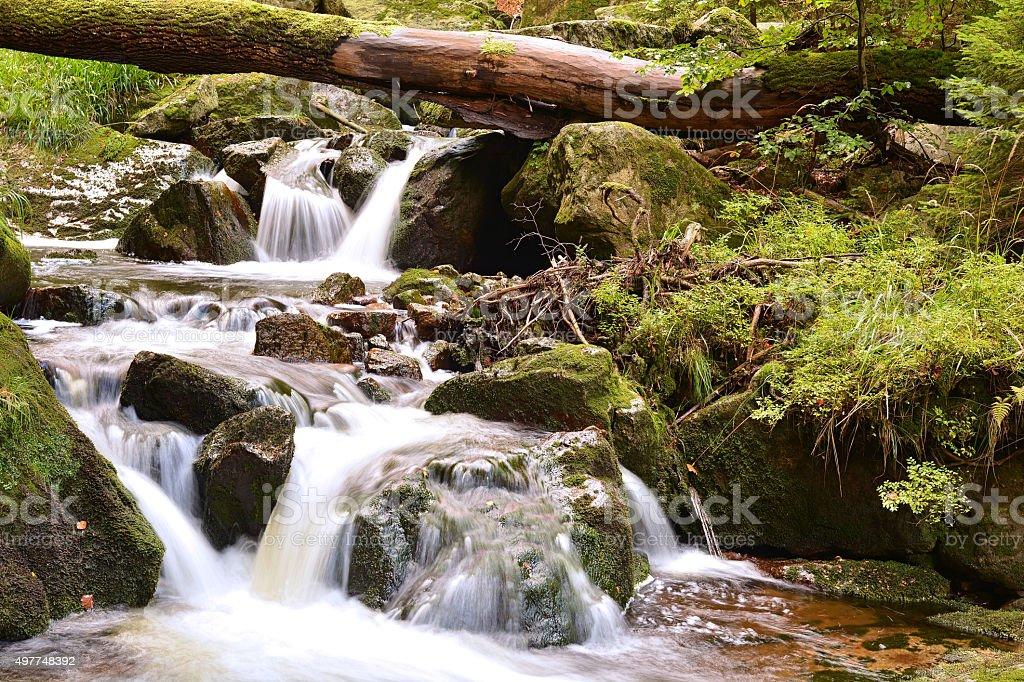 Der Fluss Ilse stock photo