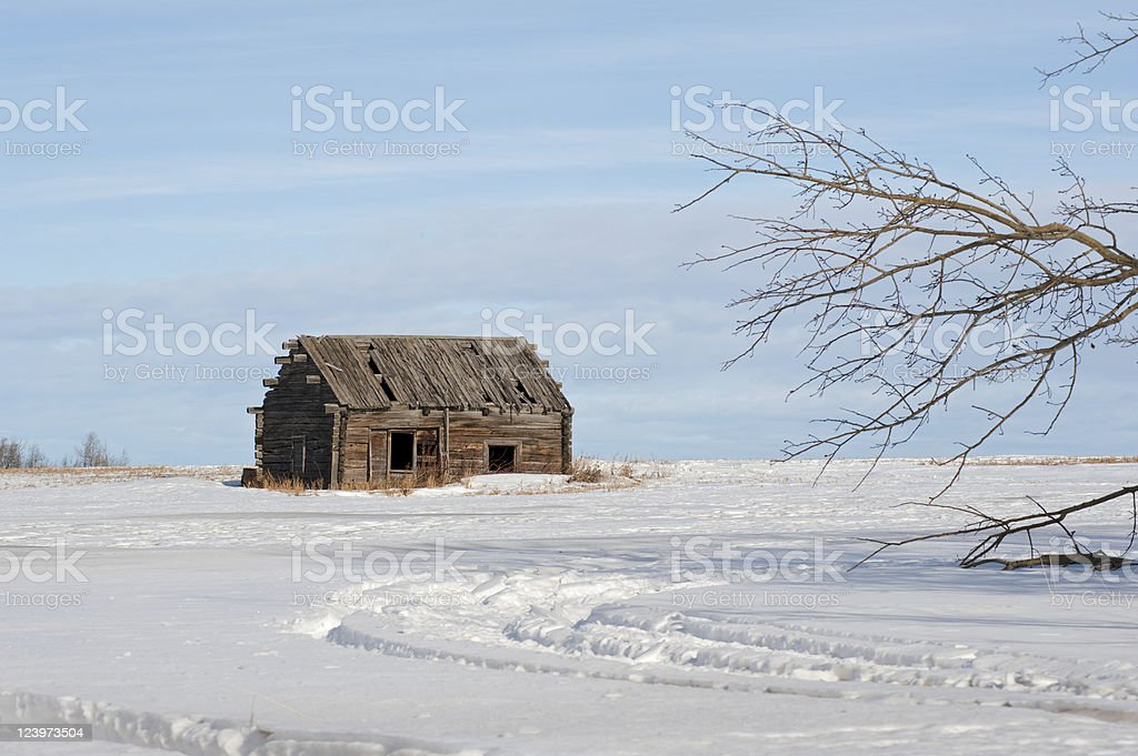 derelict log cabin and snowy field royalty-free stock photo
