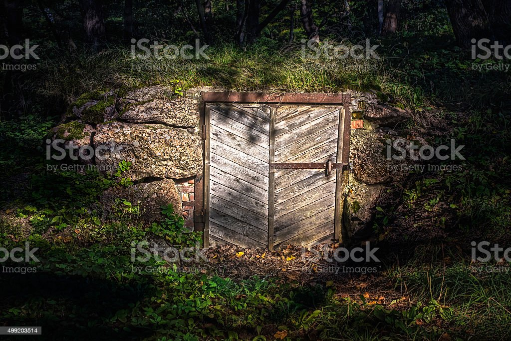 Derelict old door in stone wall covered by vegetation stock photo
