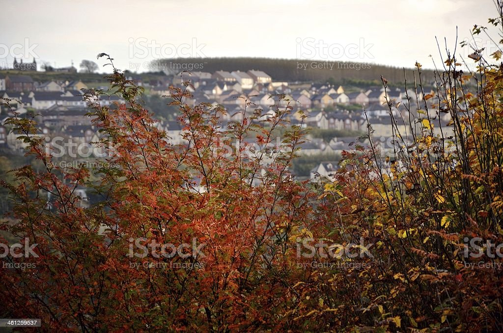 Derry royalty-free stock photo