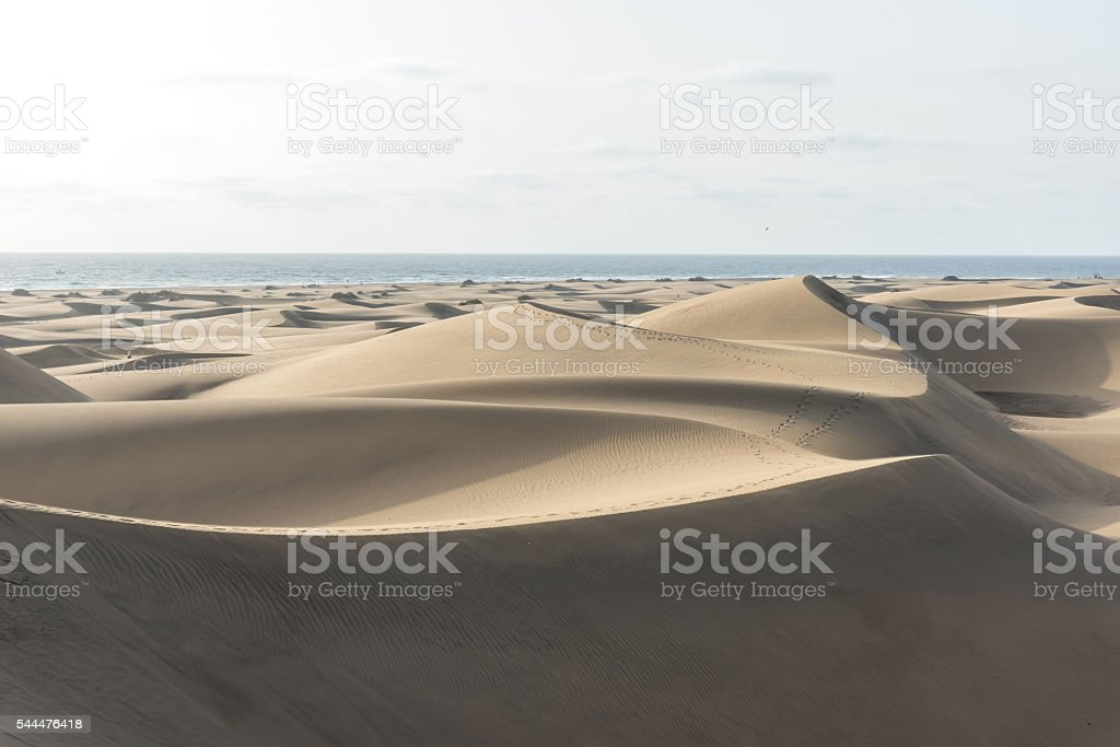 Desert and sea - beautiful landscape with sand dunes stock photo