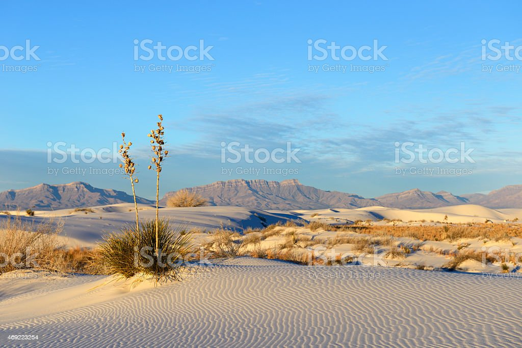 Desert at White Sands and San Andres Mountains stock photo