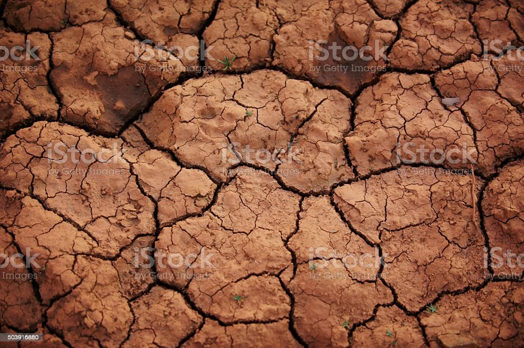 desert background stock photo