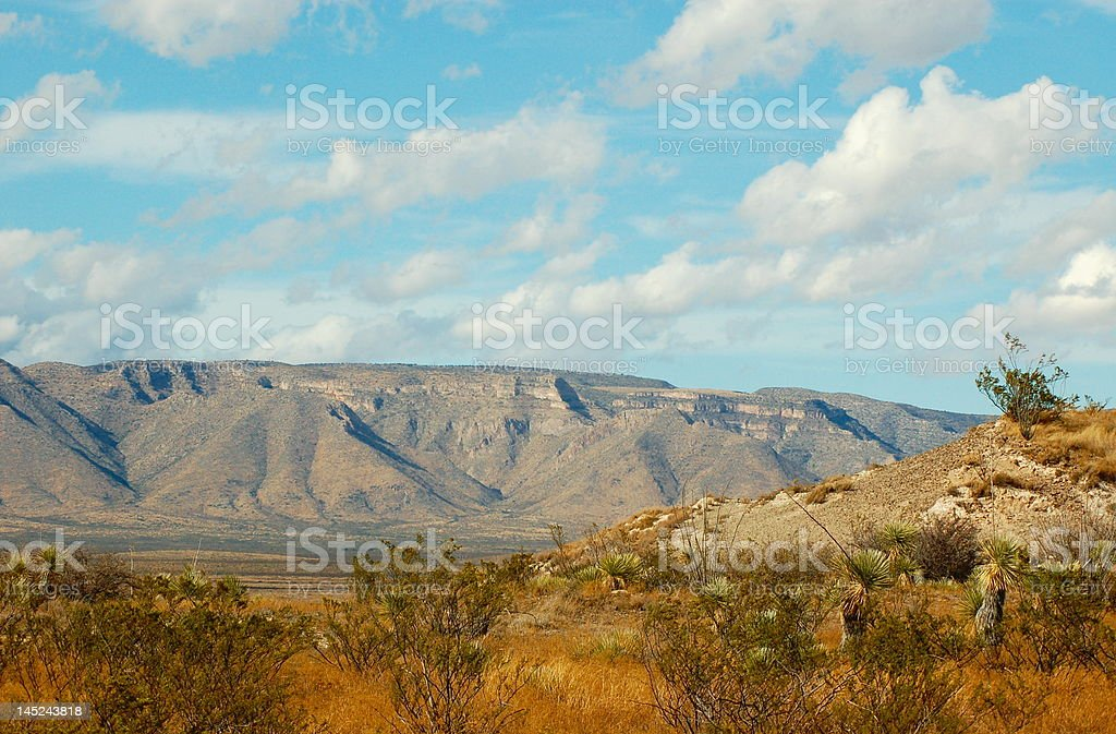 Desert Beauty royalty-free stock photo