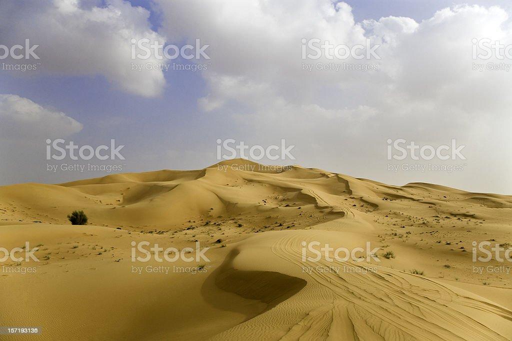 Desert Beauty royalty-free stock photo