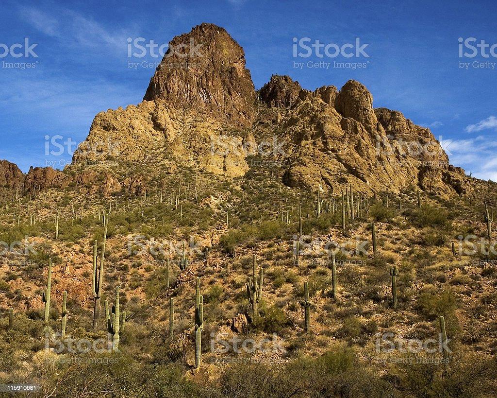 desert canyon royalty-free stock photo