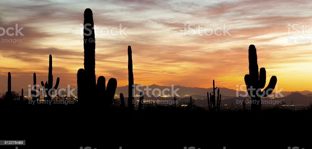 Desert City View stock photo