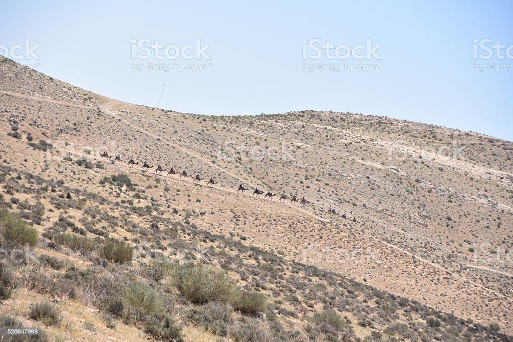 Desert Convoy stock photo