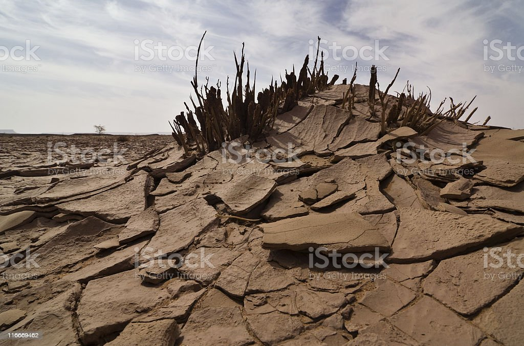 Desert decamped royalty-free stock photo