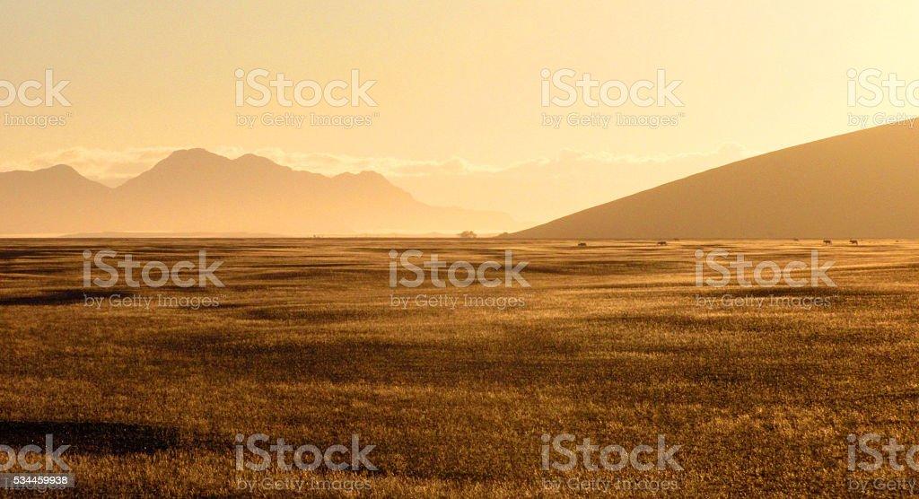 Desert dry landscape Namibia dune 45 mountain range stock photo