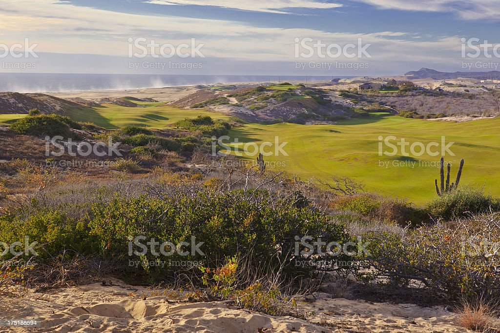 Desert Golf Course, Cabo San Lucas stock photo