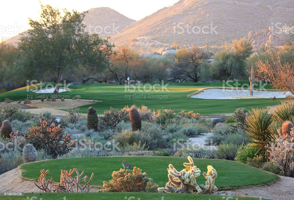 Desert Golf Course in Scottsdale stock photo
