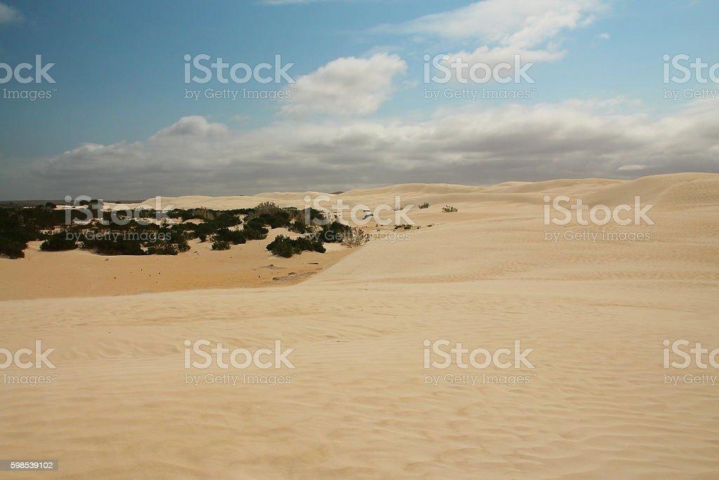 Desert in Australia stock photo