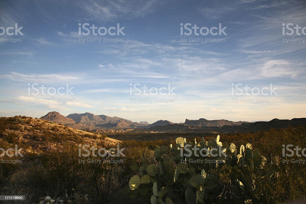 Desert in Big Bend National Park stock photo