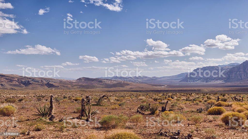 Desert in Nevada stock photo