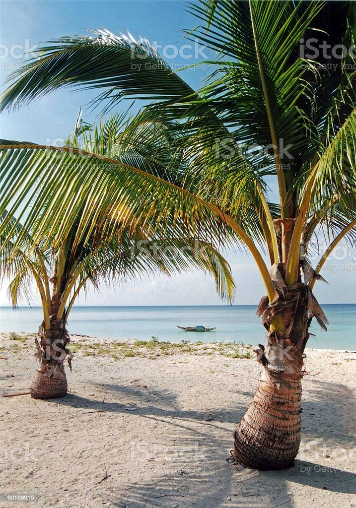 desert island beach palm trees philippines royalty-free stock photo