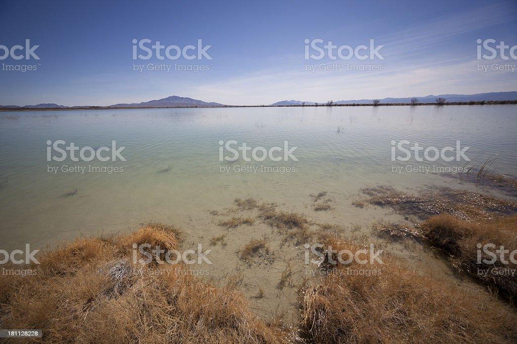 Desert Lake royalty-free stock photo