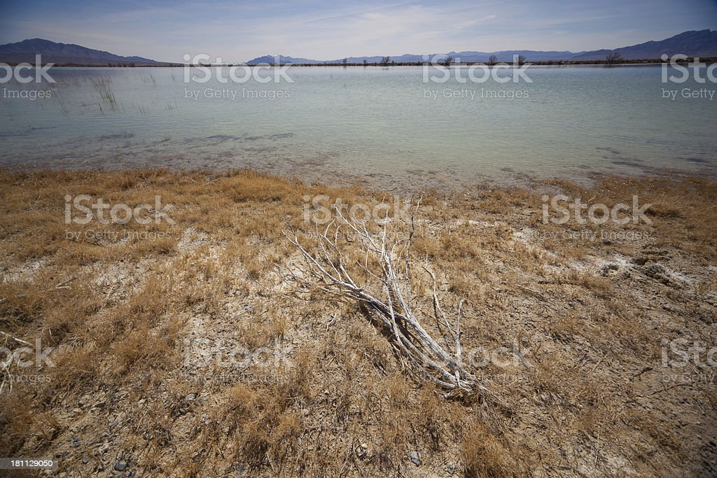 Desert Lake royalty-free stock photo