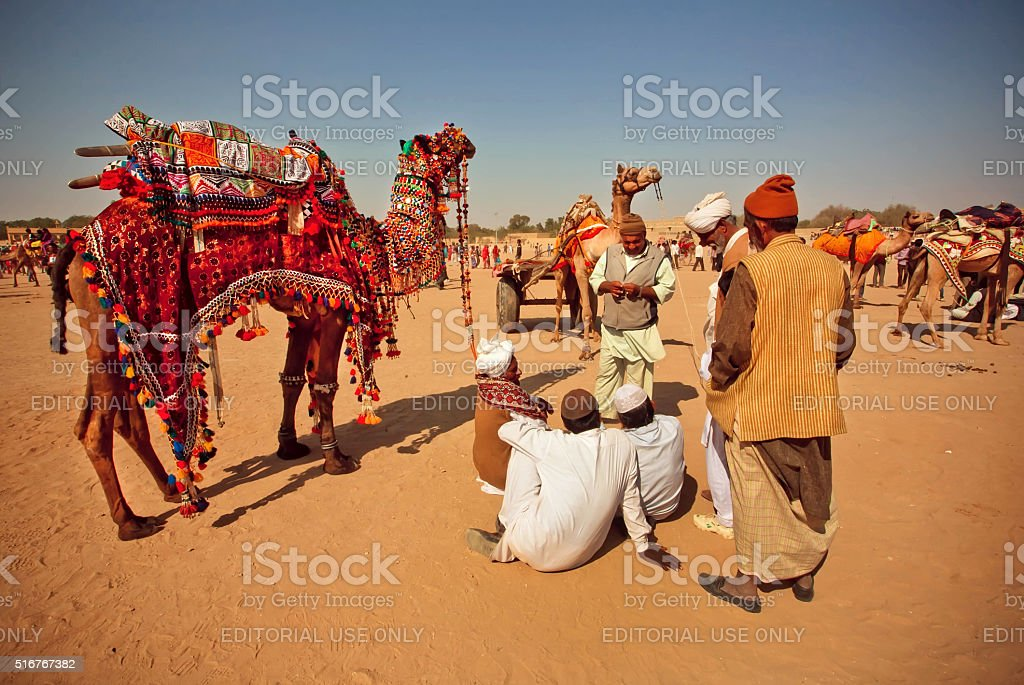 Desert landscape and villagers with camels relaxing stock photo