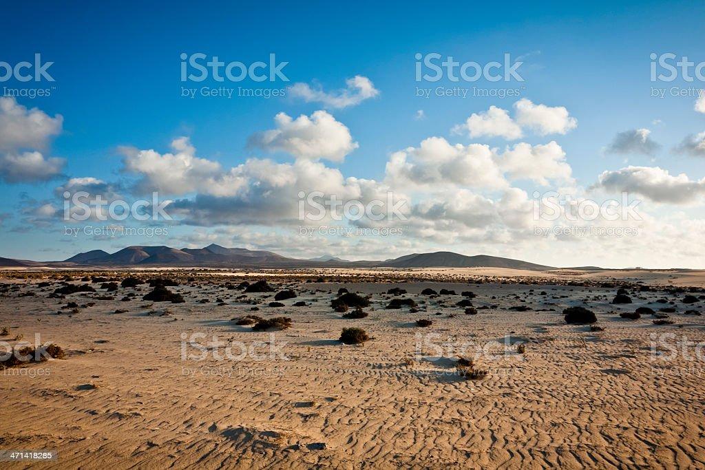 Desert landscape at Park of Corralejo. Fuerteventura royalty-free stock photo