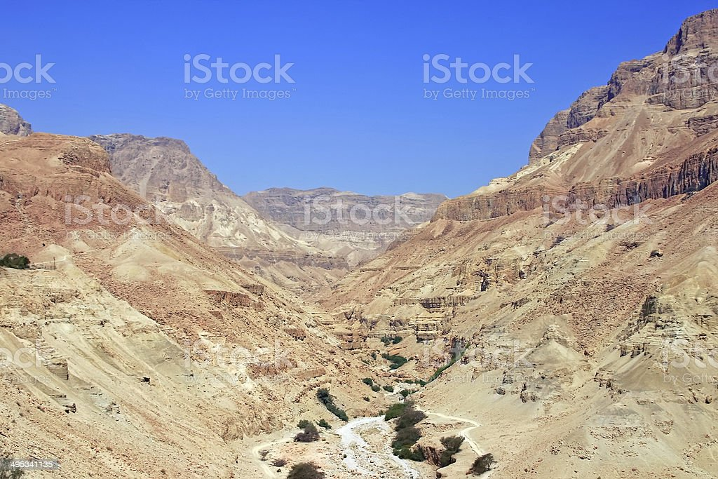 Desert landscape, biblical scene royalty-free stock photo