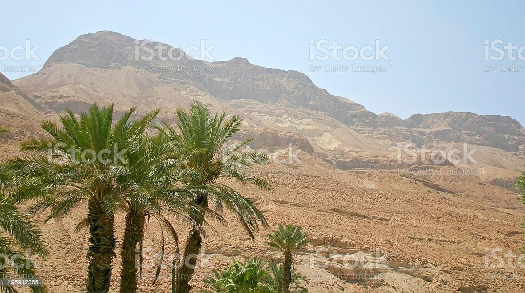 Desert landscape, biblical scene stock photo