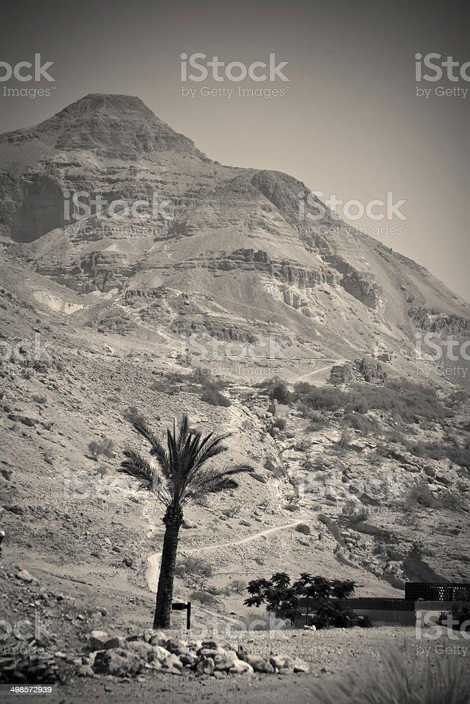 Desert landscape, biblical scene royalty-free stock photo