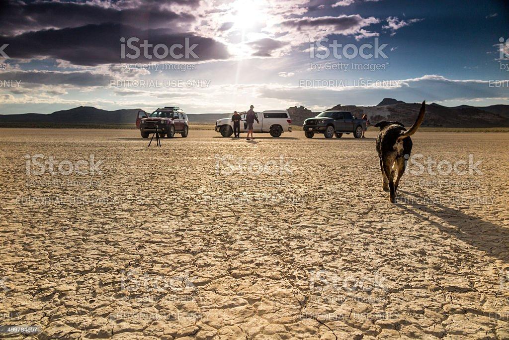 desert landscape film crew and dog stock photo