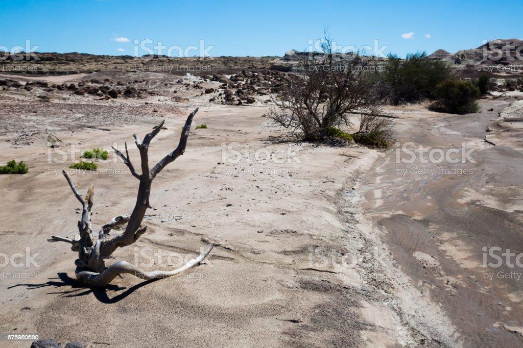 Desert landscape of province of La Rioja stock photo