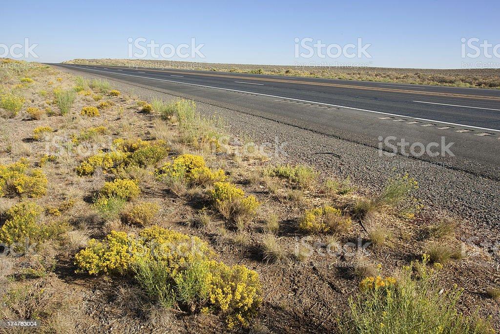 desert landscape road trip stock photo