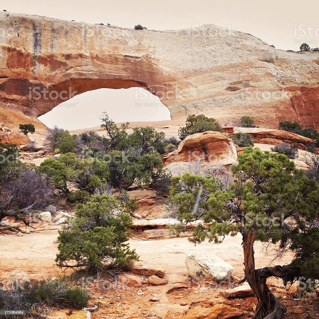 desert landscape sandstone arch stock photo