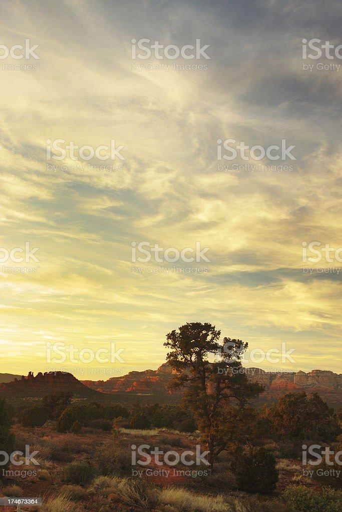 Desert Landscape Sedona Red Rocks royalty-free stock photo