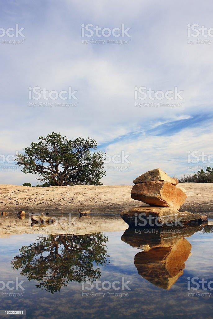 desert landscape water tree rocks reflection stock photo