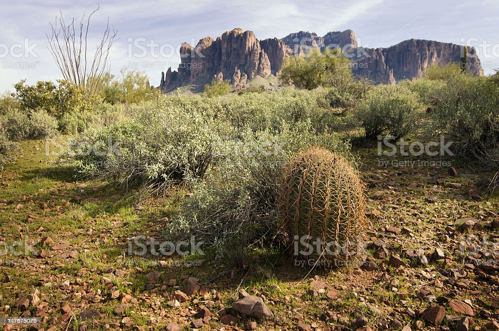 Desert landscape with mountain in distance royalty-free stock photo