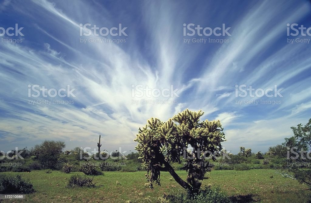 Desert Landscape_2 royalty-free stock photo