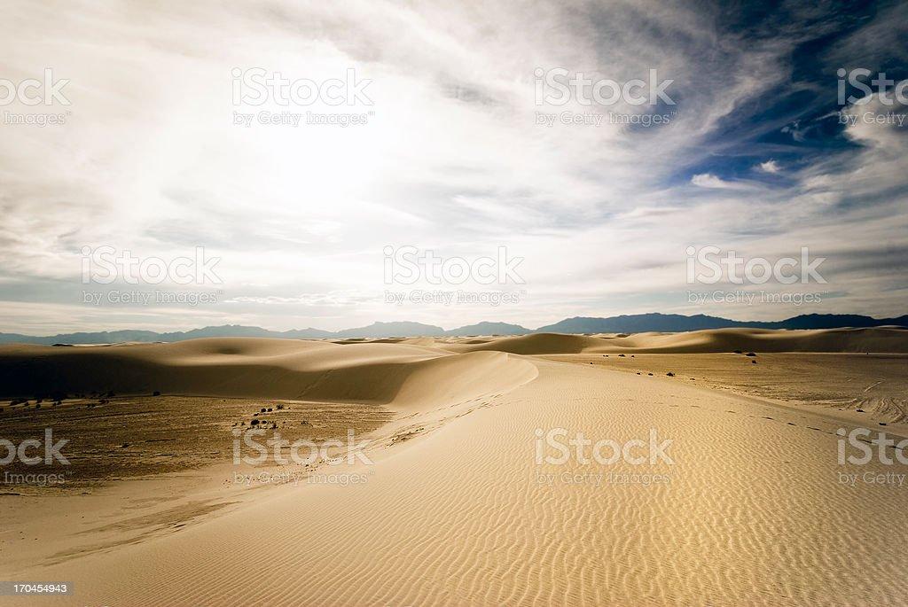 Desert Light royalty-free stock photo